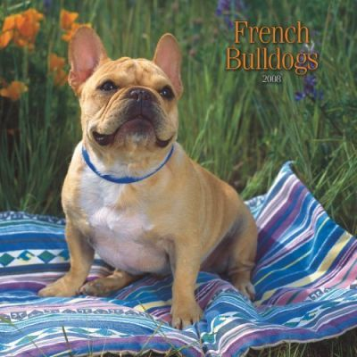 French Bulldogs 2008 Square Wall