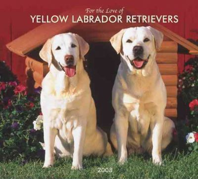 Labrador Retrievers, Yellow for the Love of 2008 Deluxe Wall
