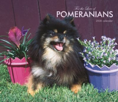 Pomeranians, for the Love of 2008 Deluxe Wall