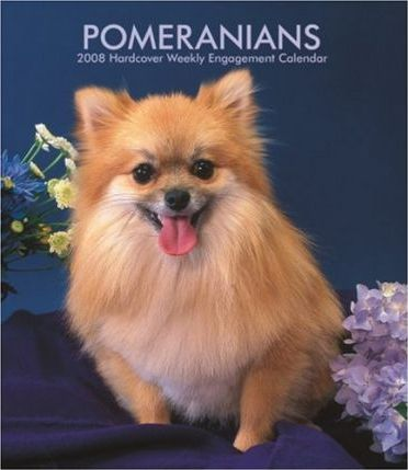 Pomeranians 2008 Hardcover Weekly Engagement