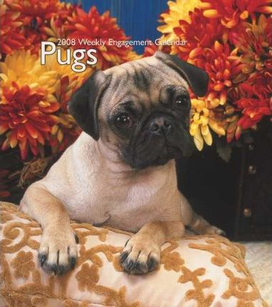Pugs 2008 Hardcover Weekly Engagement