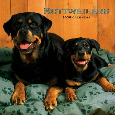 Rottweilers 2008 Square Wall