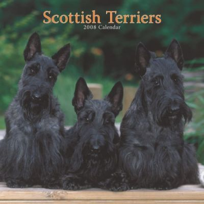 Scottish Terriers 2008 Square Wall
