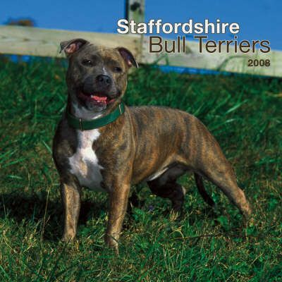 Staffordshire Bull Terriers 2008 Square Wall