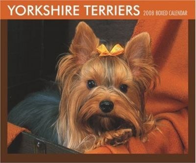 Yorkshire Terriers 2008 Boxed
