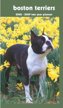 Boston Terriers 2008 - 2009 Pocket Planner