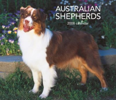 Australian Shepherds, for the Love of 2008 Deluxe Wall