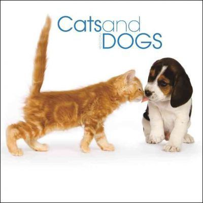 Cats and Dogs 2009 Calendar