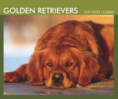 Golden Retrievers 2009  Calendar
