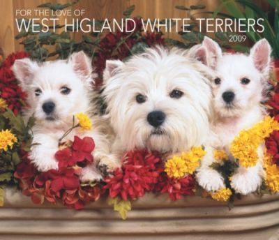 For the Love of West Highland White Terriers 2009 Calendar