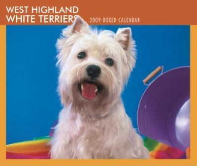 West Highland White Terriers 2009 Boxed Calendar