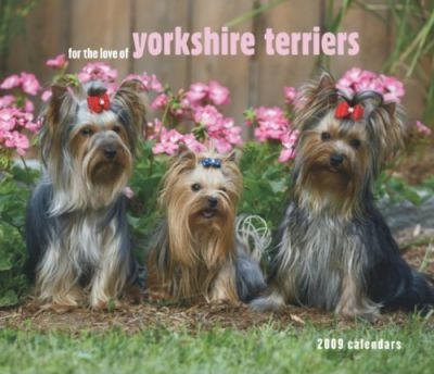 For the Love of Yorkshire Terriers 2009 Calendar