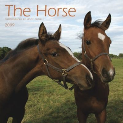 The Horse by Marie Bushill 2009 Calendar