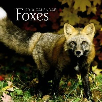 Foxes 2010 Wall
