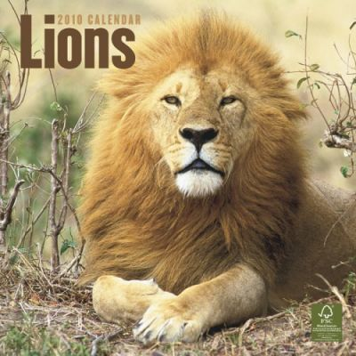 Lions 2010 Wall