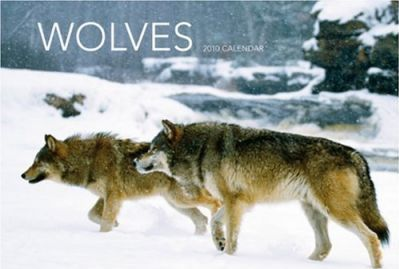 Wolves 2010 Deluxe