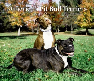 American Pit Bull Terriers, for the Love of 2010 Deluxe