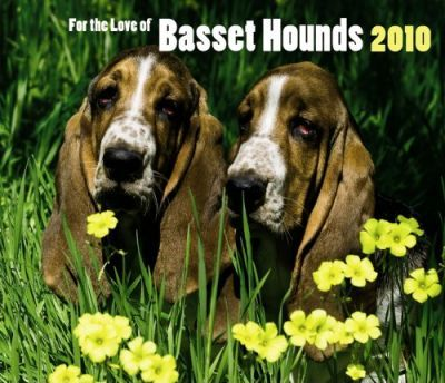 Basset Hounds, for the Love of 2010 Deluxe