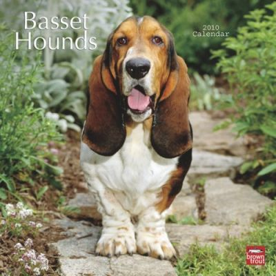 Basset Hounds 2010 Wall