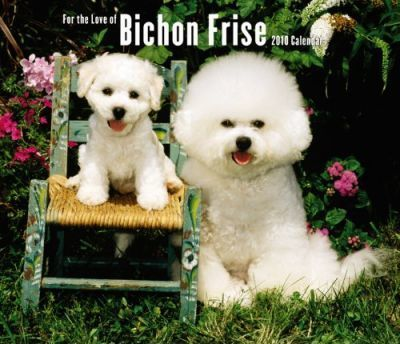 Bichon Frise, for the Love of 2010 Deluxe