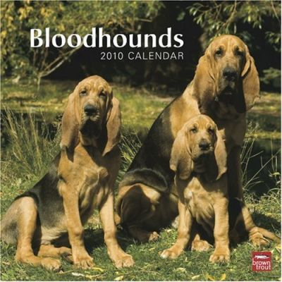 Bloodhounds 2010 Wall