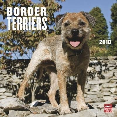 Border Terriers 2010 Wall