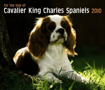 Cavalier King Charles Spaniels, for the Love of 2010 Deluxe
