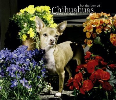 Chihuahuas, for the Love of 2010 Deluxe