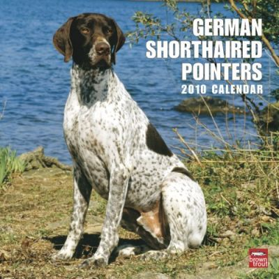 German Shorthaired Pointers 2010 Wall