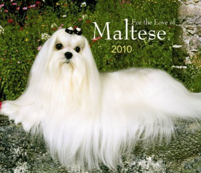 Maltese, for the Love of 2010 Deluxe