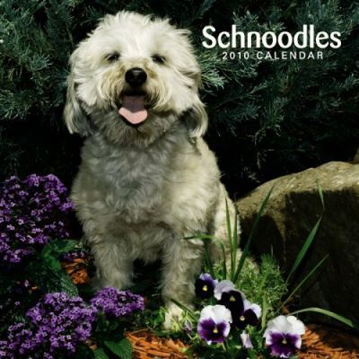 Schnoodles 2010 Wall