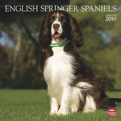 English Springer Spaniels (International) 2010 Wall
