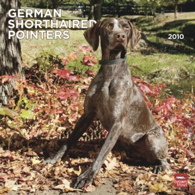 German Shorthaired Pointers (International) 2010 Wall