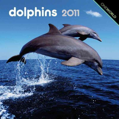 Dolphins 2011