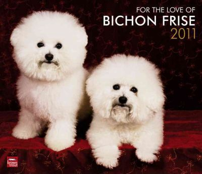For the Love of Bichon Frise 2011