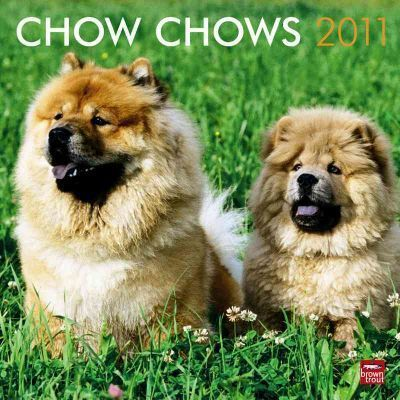 Chow Chows 2011