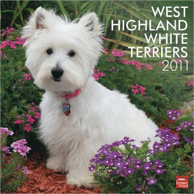 West Highland White Terriers 2011