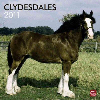 Clydesdales 2011