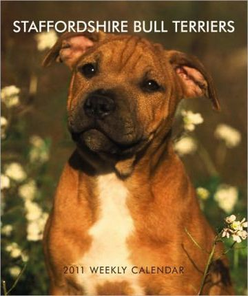 Staffordshire Bull Terriers 2011 Desk Diary