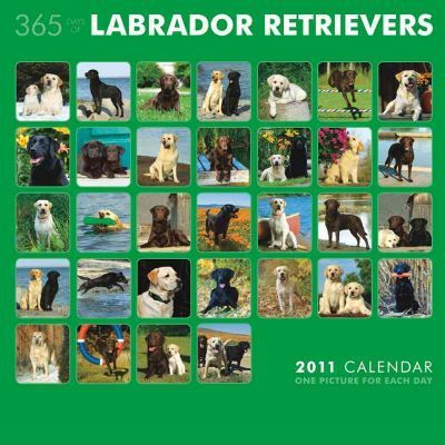 Labrador Retrievers 365 Days 2011