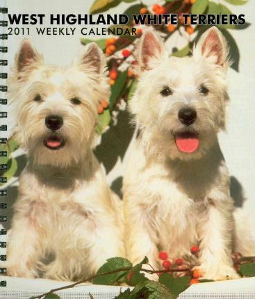 West Highland White Terriers 2011 Desk Diary