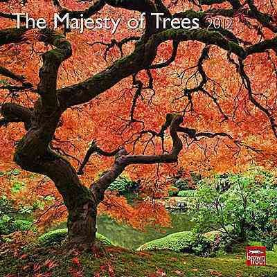The Majesty of Trees 2012 Wall Calendar