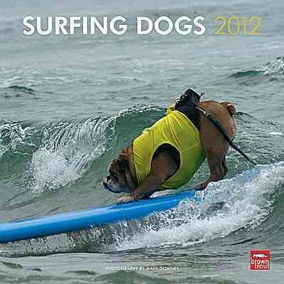 Surfing Dogs 2012 Wall Calendar