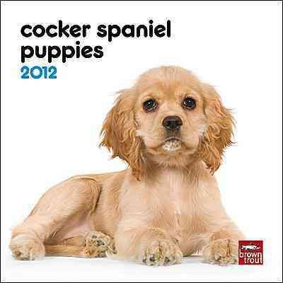 Cocker Spaniel Puppies 2012 Calendar