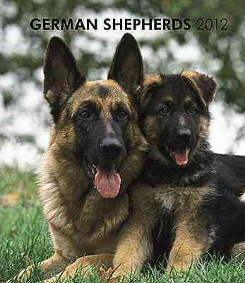 German Shepherds 2012 Weekly Calendar