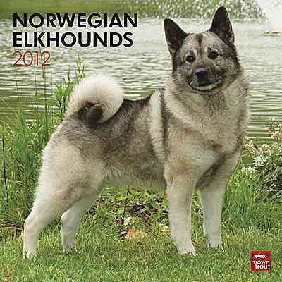 Norwegian Elkhounds 2012 Wall Calendar