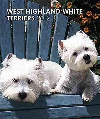 West Highland Terriers 2012 Desk Diary