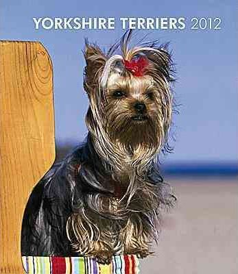 Yorkshire Terriers 2012 Desk Diary