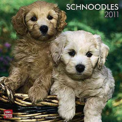 Schnoodles 2011