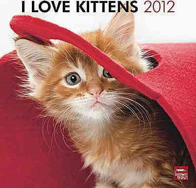 I Love Kittens 2012 Wall Calendar